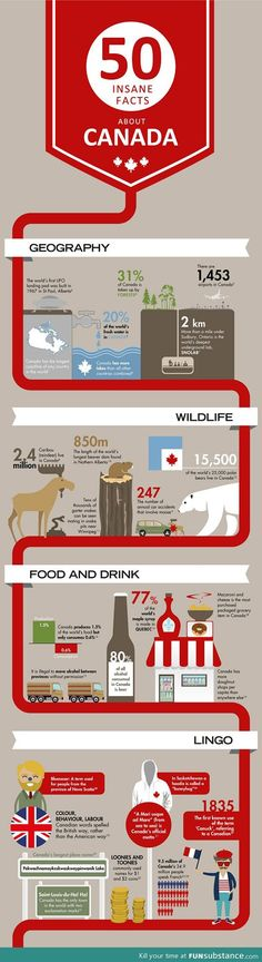 Funny pictures about Insane facts about Canada. Oh, and cool pics about Insane facts about Canada. Also, Insane facts about Canada. Canadian Things, I Am Canadian, Canadian Girls, Canadian History, Canadian Facts, Canadian Culture, Canadian Travel, Canada Funny, Canada 150