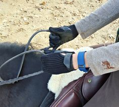 Fitbit for Horseback Riding: Fun Facts & Features | Saddle Seeks Horse