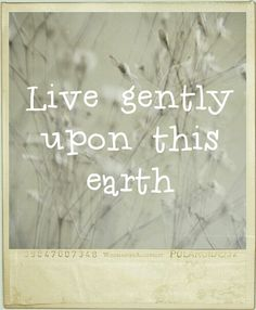 Live gently upon this earth. Earth Song, Soul Shine, We Are The World, Love Life, Positive Vibes, Life Lessons, Wise Words, Quotes To Live By, Aqua