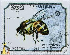 Bee stamp from Cambodia at an interesting point in Cambodian history.