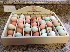 Good idea for storing/tracking eggs your chickens lay. Chicken Coop Designs, Chicken Coop Plans, Building A Chicken Coop, Diy Chicken Coop, City Chicken, Chicken Life, Chicken Runs, Chicken Houses, Keeping Chickens