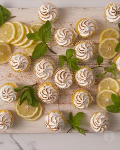 lemon meringue cheesecake Mini lemon meringues conveniently prepped in a muffin tin to create single-serve portions! The perfect canape-style tea time treat Muffin Tin Recipes, Fun Baking Recipes, Tart Recipes, Sweet Recipes, Dessert Recipes, Cooking Recipes, Canapes Recipes, Lemon Meringue Cookies, Mini Lemon Meringue Pies