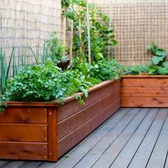 corner planter boxes - might be nice out on my deck.