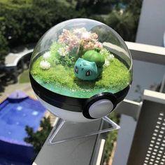 Indoor Gardens For Your Home Pokemon Table, Pokemon Room, Pokemon Craft, Cool Pokemon, Pokemon Bulbasaur, Pikachu, Indoor Gardening Supplies, Pokemon Terrarium, Hobby World