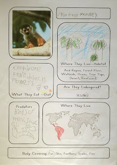 Our Worldwide Classroom. This would be great for integrating literacy into science content area. Animal Notebooking Pages (includes free printable template). Kindergarten Science, Elementary Science, Teaching Science, Science For Kids, Science Activities, Life Science, Science And Nature, Elementary Schools, Science Classroom