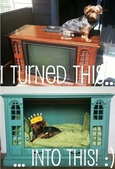 Dog Bed of radtasticness Find Everything you need to re-create these looks at Sleepy Poet Antique Mall!