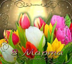 Весенние тюльпаны к 8 Марта