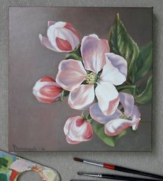 Flowers apple blossom Oil Painting on canvas Delicate Pink Flower small Oil paintings Decor wall art Tulip Painting, Acrylic Painting Flowers, Fruit Painting, Oil Painting On Canvas, Garden Painting, Art Floral, Floral Drawing, Apple Blossom Flower, Apple Flowers