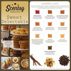 We have a scent for you!  Shop my fundraiser under open parties on www.LizzettePerez.Scentsy.us