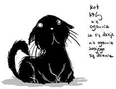 Kot Nieogar