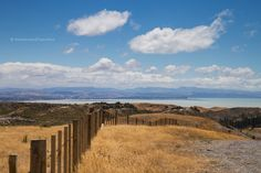 view of Hawke's Bay from Cape Kidnappers