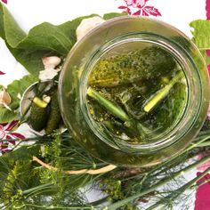 Liście chrzanu! Na co to komu!:) 3 sposoby na (z)chrzanienie czegoś Pickles, Cucumber, Recipes, Food, Meal, Eten, Recipies, Meals, Pickle