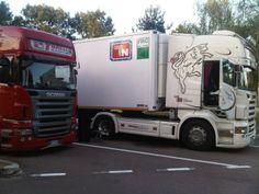 scania v8 r 500 tn torello trasporti