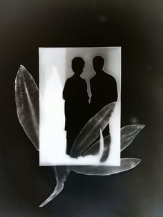 Suave Silhouettes 2009 by DKFineArtPhoto on Etsy