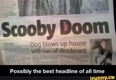 This did happen in the UK.  The dog and five other pups escaped serious injury.