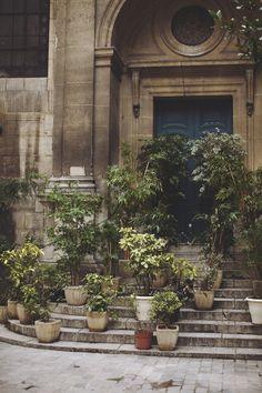 Potted plants en masse / #outdoor #plants #exterior