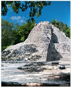 Coba Ruins in Riviera Maya >>> a ton of Mayan ruins set deep in the jungle, you can bike around and hike up some of them!