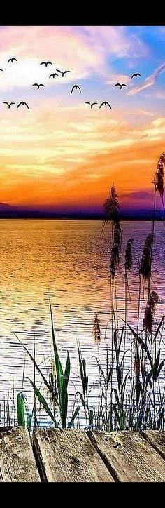 AMAZING SUNSET SHOT #by Ирина Губер #water reflection sky clouds steg pier sea lake bird birds orange yellow seascape nature landscape
