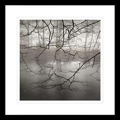 Buy David Purdie - Mist Over Pond Framed Print, 62 x 62cm Online at johnlewis.com