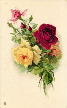 four roses, red, yellow, pink, orange, with red buds