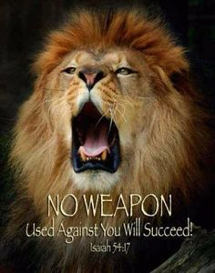 The Lion of the Tribe of Judah. Lion Of Judah Jesus, No Weapon Formed, Lion Quotes, Animal Quotes, Isaiah 54, Tribe Of Judah, Prophetic Art, Armor Of God, Prayer Warrior