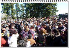 El Vecinal: Bulnes (CHILE), sábado 30 de julio de 2016