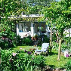 Another neighbours gardenhouse in Amsterdam. Mijn volkstuinhuisje is omringd…