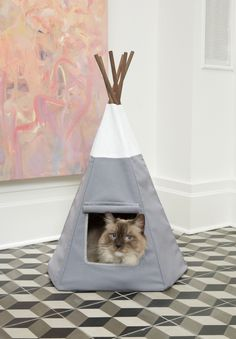 might be time to upgrade meow's teepee