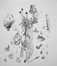 I love vintage anatomical drawings. The detail and complexity of human and animal body parts, or the delicate details of plants and flowers: it's gorgeous to see those transformed to soft pencil drawings. At first glance the illustrations of Canadian artist Andy van Dinh are just like these anatomical drawings we all know so well. …