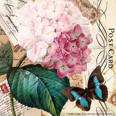 floral theme with butterfly Decoupage Vintage, Decoupage Paper, Vintage Crafts, Vintage Paper, Vintage Art, Background Vintage, Paper Background, Vintage Postcards, Vintage Images