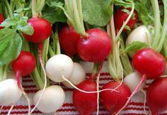 Ridichiile rosii si negre, o explozie de sanatate - Beneficii si informatii nutritionale