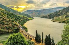 Douro vineyards near Pinhao, Portugal - Douro Valley