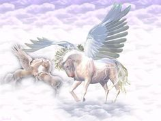 umicorn and pegusus pics | Pegasus and Unicorn in the Sky Wallpaper