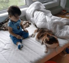 Kitty seems to be presenting himself as a pillow...as if he's used to it...so I guess it's okay. Normally I don't like seeing small kids playing so roughly with pets.