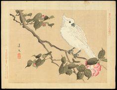 "Item Details for Keibun Matsumura (c. late Meiji) ""Cockatoo and Camellia"""