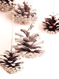Glitter spraying pine cones for decorations~