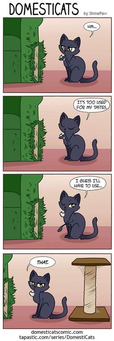 DomestiCats :: Scratch post | Tapastic Comics - image 1
