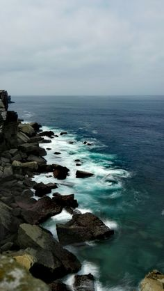 Felsen Klippen Küste