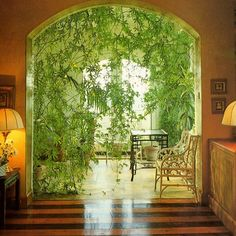 Home and garden decorating is a hot topic. Every second television show is related to decorating your home and garden. Programs such as The Decorating Challenge, Curb Appeal and The House Doctor are gre Bohemian House, Bohemian Decor, Bohemian Interior, Boho, Terence Conran, Deco Nature, Plant Decor, Houseplants, My Dream Home