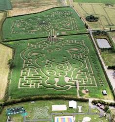 A Shaun the Sheep Maze has been carved out in fields of maize at Postern House Farm at Tatenhill, Staffordshire.