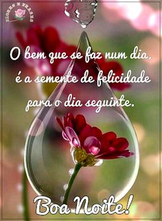 Boa tarde deus, boa noite com deus, vídeos de boa noite, bia noite Lessons For Kids, Christmas Bulbs, Fruit Dips, Monalisa, Wesley, Jesus Prayer, Party Cupcakes, Spring Sandals, Health Lessons