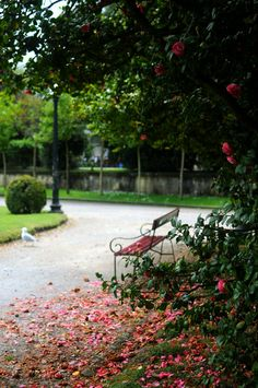 Porto, Portugal, make time for the Jardins do Palacio de Cristal.