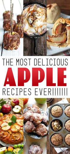 The Most Delicious Apple Recipes Ever! - The Cottage Market