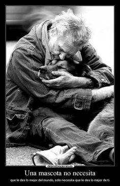 Una mascota no necesita - que le des lo mejor del mundo, sólo necesita que le des lo mejor de ti.