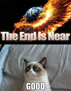 Grumpy Cat. That pin doesn't match here, but hey... I love sarcasm, I love grumpy cat and I love black humour :)