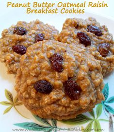Yes, please! High protein, low carb peanut butter oatmeal raisin breakfast cookies. no flour.