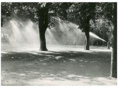 Kinszki Imre (1901-1945): Park locsoló, 1933 (*) Budapest, Street Photography, Waterfall, Black And White, Artwork, Outdoor, Park, Photographs, Outdoors
