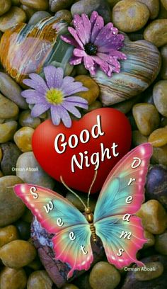 """Good Night Quotes and Good Night Images Good night blessings """"Good night, good night! Parting is such sweet sorrow, that I shall say good night till it is tomorrow."""" Amazing Good Night Love Quotes & Sayings Good Night Sister, Good Night Hindi, Lovely Good Night, Good Night Flowers, Good Night I Love You, Beautiful Good Night Images, Romantic Good Night, Love You Gif, Good Night Friends"""