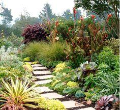 arbustes à fleurs à floraison et estivale plantes succulentes tapissantes