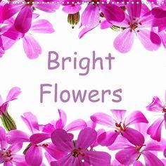 Bright Flowers - CALVENDO
